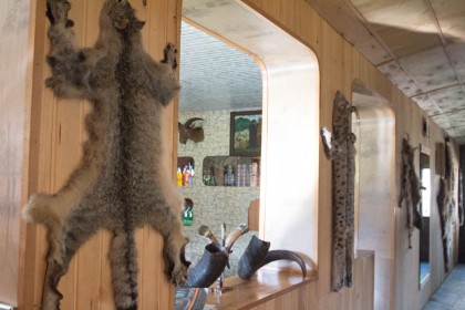 Wildcat, badger and bear skins hanging in the hotel, which is also Paata's family's house