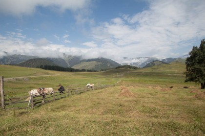 The fields of Lower Omalo and our horses for the day's trek to Lake Oreti